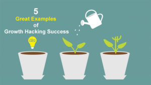 5 Great Examples of Growth Hacking Success